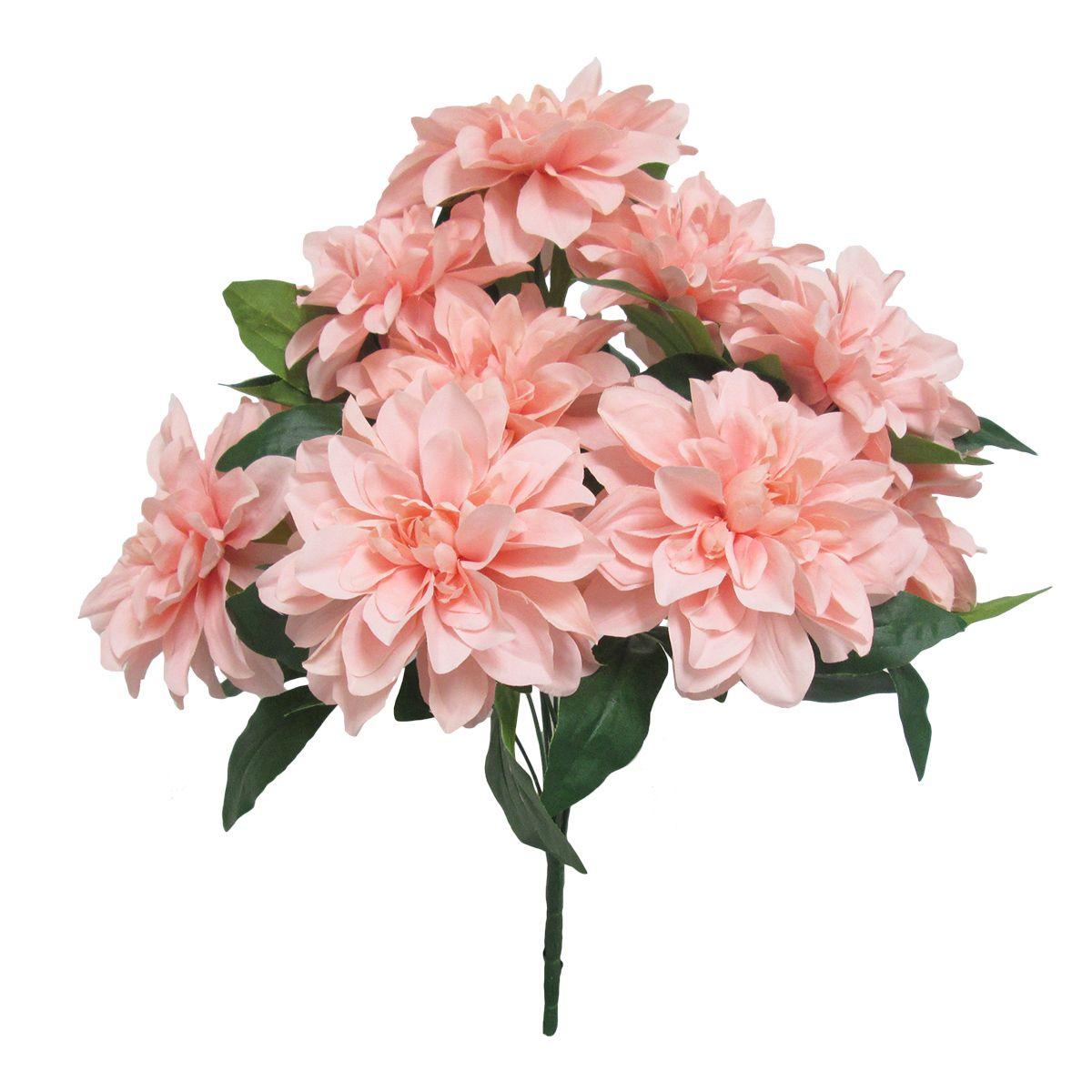 Deluxe Dahlia Bush x10, 18.5in, Blush Pink